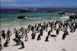 Viaje de 15 días a Sudáfrica desde Ciudad del Cabo