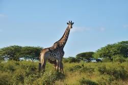 Destacados 12 días de la gira de Cabo y KwaZulu Natal desde Ciudad del Cabo