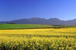 Puntos destacados de 15 días del viaje del Cabo desde Ciudad del Cabo