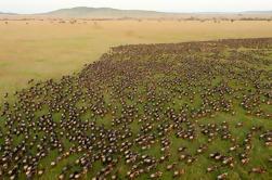 Safari de la naturaleza de Tanzania de 10 días de Arusha