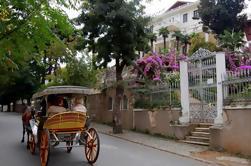Excursión de día completo a las islas del príncipe incluyendo almuerzo de Estambul