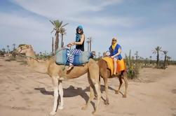 Camel Ride en Marrakech
