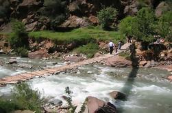 Excursión de un día a Ourika Valley desde Marrakech