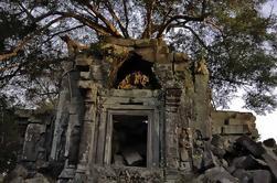 Excursión de un día a Beng Mealea Temple y Kampong Khleang de Siem Reap