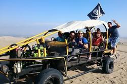 Lima a Isla Ballestas, Reserva de Paracas