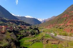 Visite privée d'une journée à la cascade de la vallée de l'Ourika depuis Marrakech