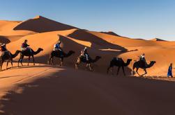Excursión privada de 3 días a las dunas del Erg Chebbi, las montañas del Atlas y las gargantas del Todra desde Marrakech