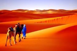 9 noches de visita privada a Marruecos