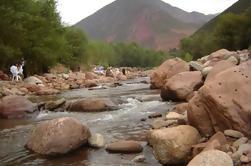 Journée privée: Vallée de l'Ourika à partir de Marrakech