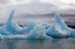 Laguna de Jokulsarlon y Costa Sur: Tour de día privado desde Reykjavik
