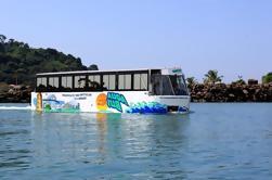 Aquabus City Tour à l'île Flamenco