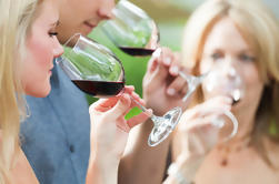 6 horas de degustación de vinos de Napa Valley desde San Francisco