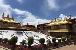 Excursión de 5 días al Monasterio Central de Tíbet a Lhasa, Gyantse y Shigatse
