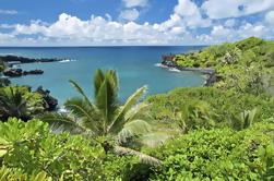 Tour de Maui de Día Completo: Viaje a Hana