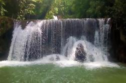 Ron de St Elizabeth y la experiencia de la cascada