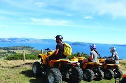 Aventura en bicicleta en quad desde Rotorua