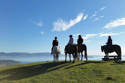 Caballo Trekking desde Rotorua