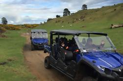 Off-Road 4WD aventura de Buggy de Rotorua