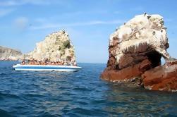 Paracas National Reserve and Ballesta Islands Tour