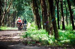Bike los túneles de Cu Chi
