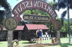 Reserva privada de Appleton Estate Rum desde Montego Bay