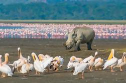 Parque Nacional Lago Nakuru: Excursión de un día desde Nairobi