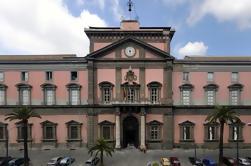Tour del Museo Arqueológico de Nápoles