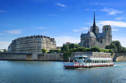 Tour privado: Tour por la ciudad de París, crucero y almuerzo