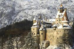 Tour privado de Bucarest a Transilvania: Castillo de Sinaia, Castillo de Drácula, Fortaleza de Rasnov, Parque Dino y Cueva Valea Cetatii