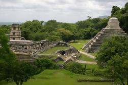 Coba e Tulum Ruins Tour Cenote Plus Visita