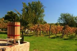 Wine Tour de Etyek desde Budapest