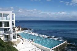 Private Bondi para Coogee Beach Coastal Walking Tour Incluindo Gourmet Café da manhã e almoço