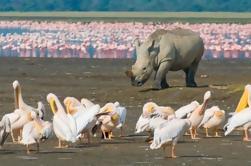 Hells Gate y el Lago Naivasha Tour de día guiado desde Nairobi