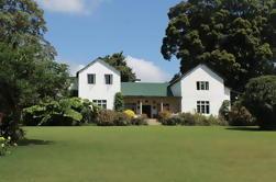 Kiambethu Tea Farm: Excursión de un día desde Nairobi