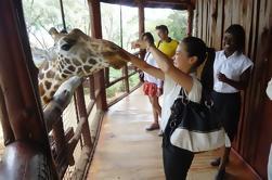 Karen Blixen Kazuri Tour de Día de Centro de Giras y Perlas de Nairobi