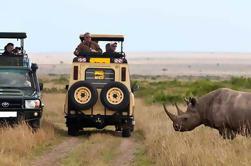 14 días de safari de acampar en Kenia y Tanzania desde Nairobi