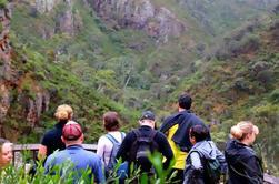 Excursión de un día para grupos pequeños de Parque de Conservación Morialta desde Adelaida