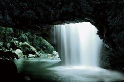 Cueva del gusano de resplandor y viaje natural del puente de la costa de oro