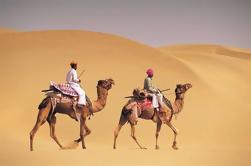 14-Nights Tour de Royal Rajasthan