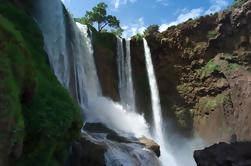 Excursão de um dia a Ouzoud Cachoeiras de Marrakech