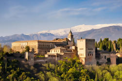 Private Granada Day Trip including Alhambra and Generalife Gardens from Malaga