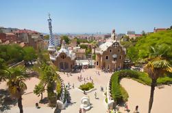 Salte la Línea: Visita al Parque Guell y Sagrada Familia