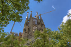 Priority Access: Sagrada Familia Tour met Towers
