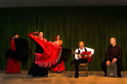 Sightseeing Evening Tour met Flamenco Show en Op