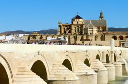 4-Day Spain Tour: Cordoba, Sevilla en Granada vanuit Madrid