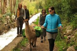 Tour de 9 días desde Lima: Perú Vida y Cultura Andina