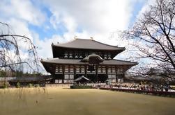Viaje de Kioto y Nara desde Kioto, incluido el Castillo de Nijo