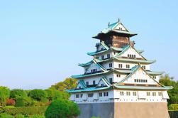 Excursión a pie por Osaka con crucero desde Kyoto