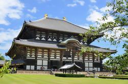 Excursión de dos días a Kyoto y Nara por tren bala desde Tokio