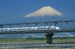 Kyoto y Nara Excursión en tren de 2 días o 3 días por tren bala desde Tokio